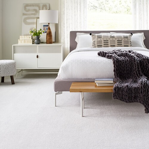 Comforable Carpet | Yetzer Home Store