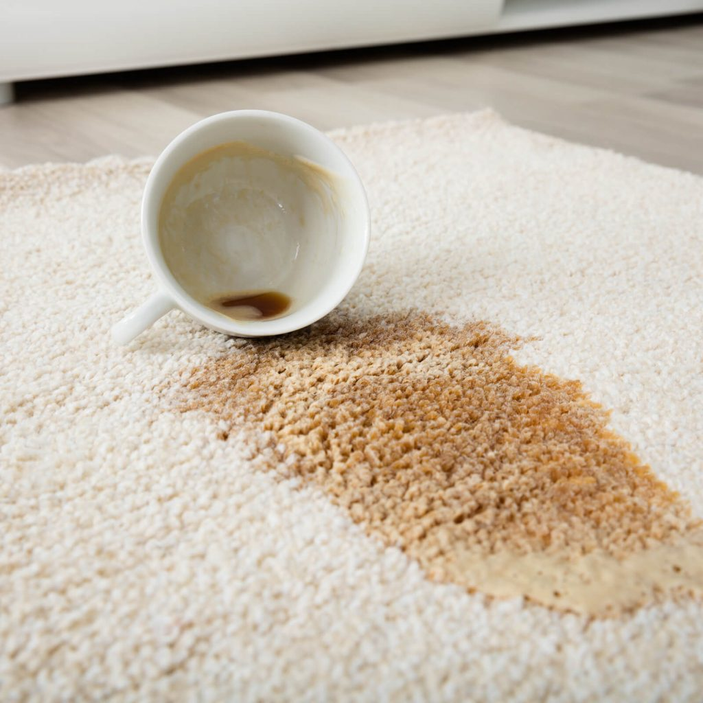 Professional Rug Cleaning | Yetzer Home Store